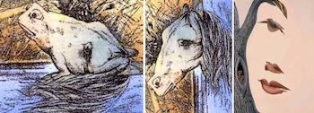Visualización de una rana y de un caballo, esto es debido a la inter- pretación de dominancia de patrones de grises por rotación. Elementos de la naturaleza espacialmente congruentes con un rostro.