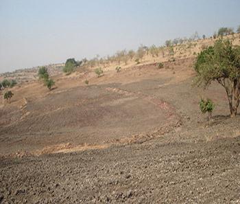Desertificación incipiente en San Andrés Azumiatla, Puebla, México