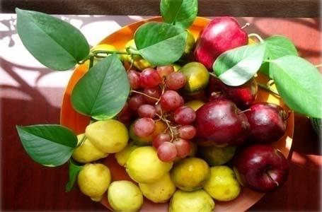 Figura 1. Plato de frutas