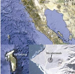 Se muestra la localización de la Isla Guadalupe (lat: 28o 58 ́24 ̋ N, long: 118o 18 ́4 ̋ O). También se muestra la ubicación del sitio seleccio- nado. Por ser la Isla Guadalupe una Reserva de la Biosfera, Sci-HI será retirada de la isla una vez terminadas las observaciones. Se está bus- cando la promoción de leyes para proteger a la Isla Guadalupe como zona radio-silente, este también es un recurso natural cada vez más escaso.