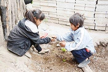 Huertos escolares de las escuelas comunitarias. Foto: Ítalo Iván Nava Fernández