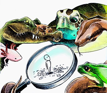 """· Ilustración: Diego Tomasini """"El Dibrujo"""""""