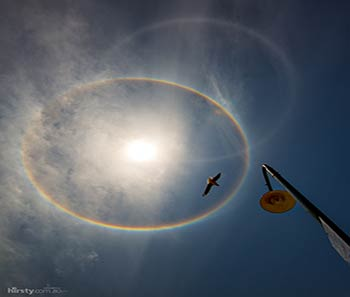 Figura 1. Arcoíris formado por la refracción cuando los rayos del Sol atraviesan pequeñas gotas de agua contenidas en la atmósfera terrestre. Imagen tomada de http://www.eluniversohoy.com/halo-australia0140214/. Crédito: Halo solar desde Sidney, Australia. 13 de febrero de 2014. Richard Hirst.