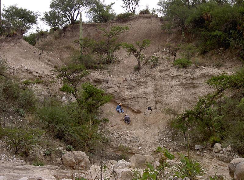 Vista de un afloramiento pleistocénico en las cercanías de Tepexi de Rodríguez. Autor: Marisol Montellano