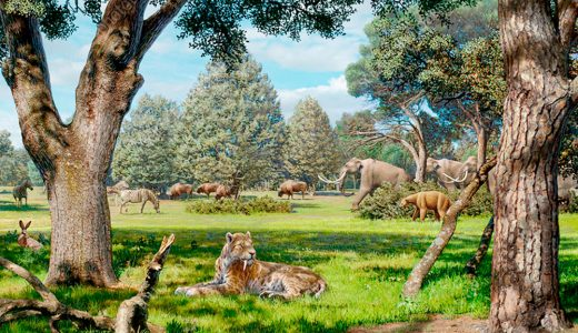 Pastizal del Pleistoceno de Norteamérica (Fuente: https://www.sciencephoto.com/media/945495/view/pleistocene-of-north-america-illustration)